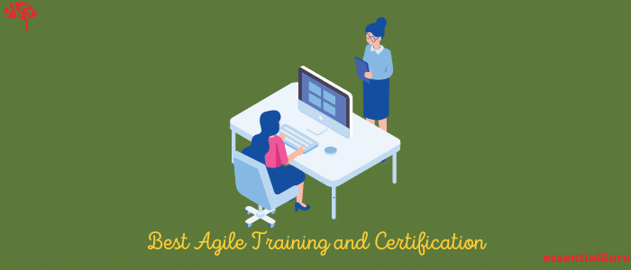 11 Best Agile Online Training Courses and Certification